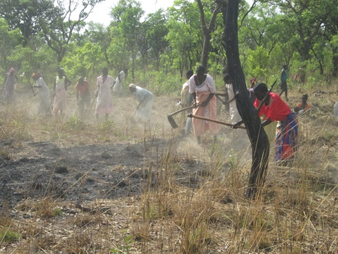 South Sudan: preparing the fields for crops